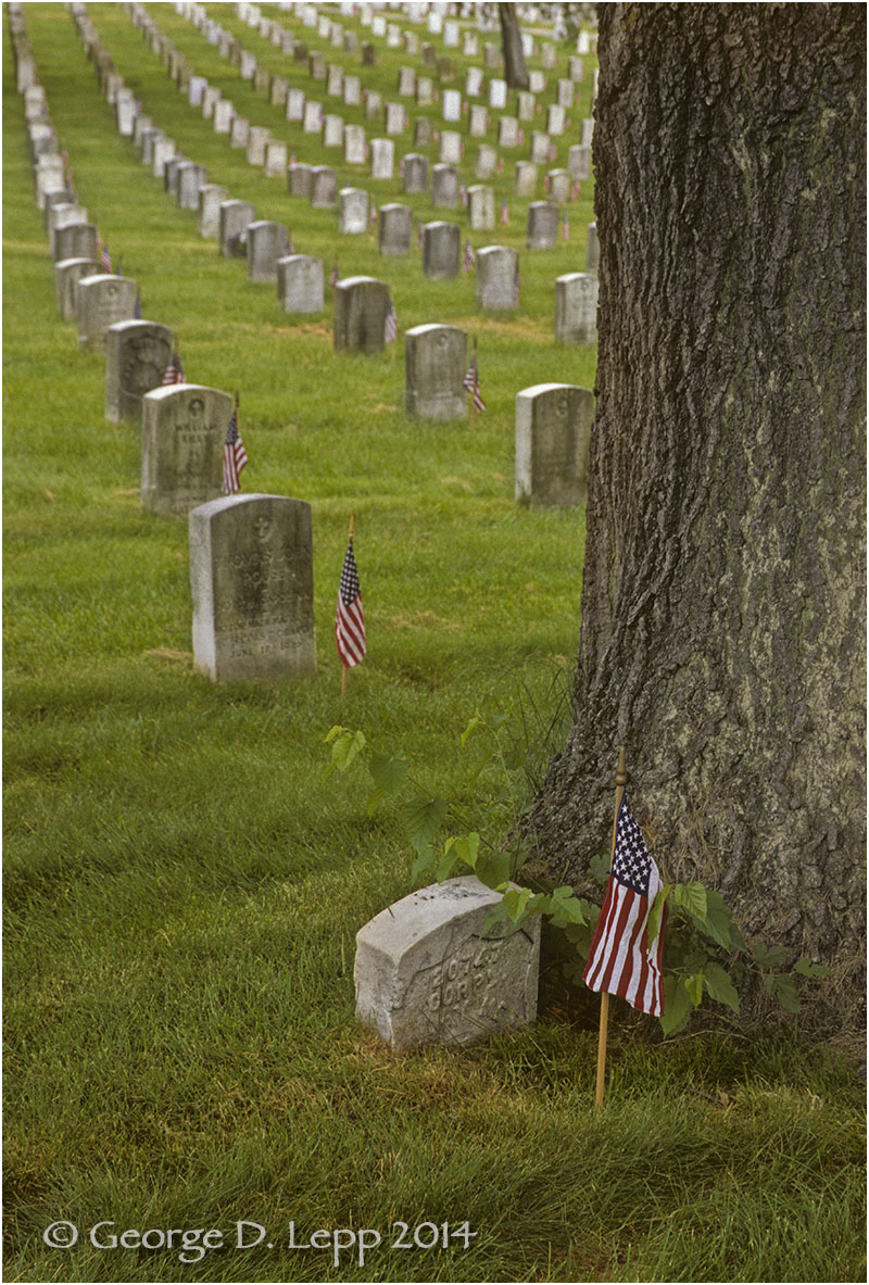 Arlington National Cemetery, D.C. © George D. Lepp 2014 L-DC-0001