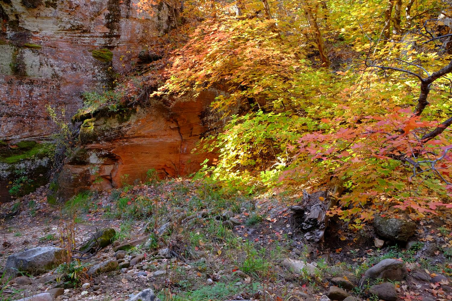 As you continue you enter the canyon where the temperature becomes quite pleasant and the colors start to explode.