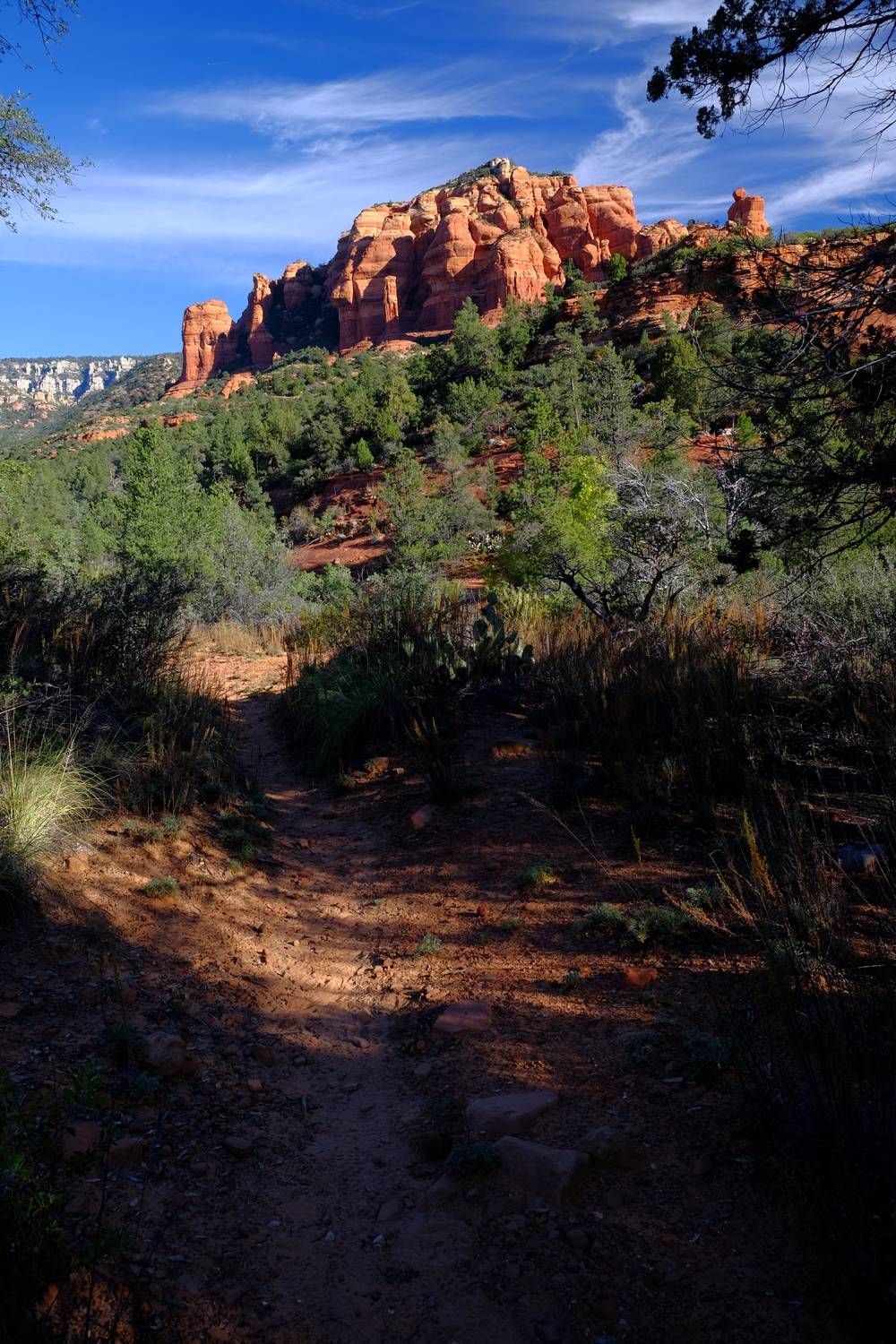 This is your typical view from the trail....not bad