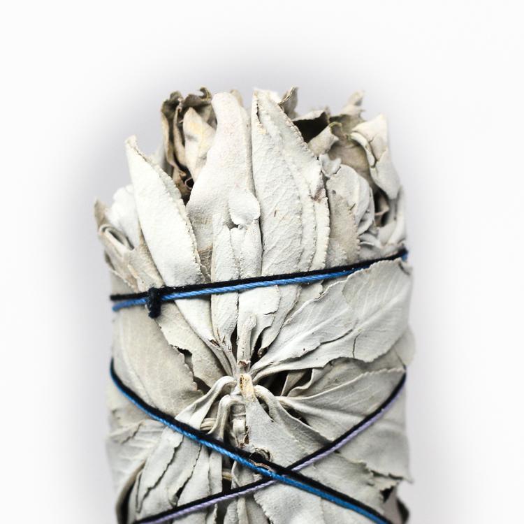 White Sage:: Photo Thehoodwitch.com