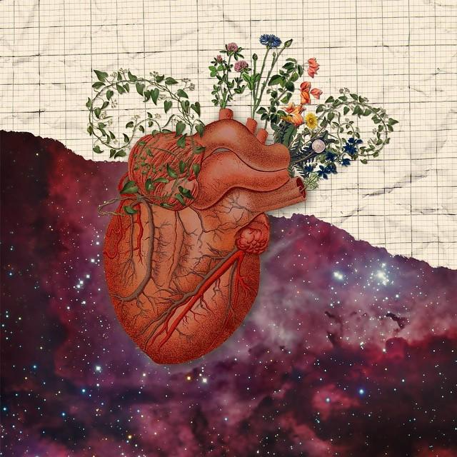 Collage by Jolene Casko