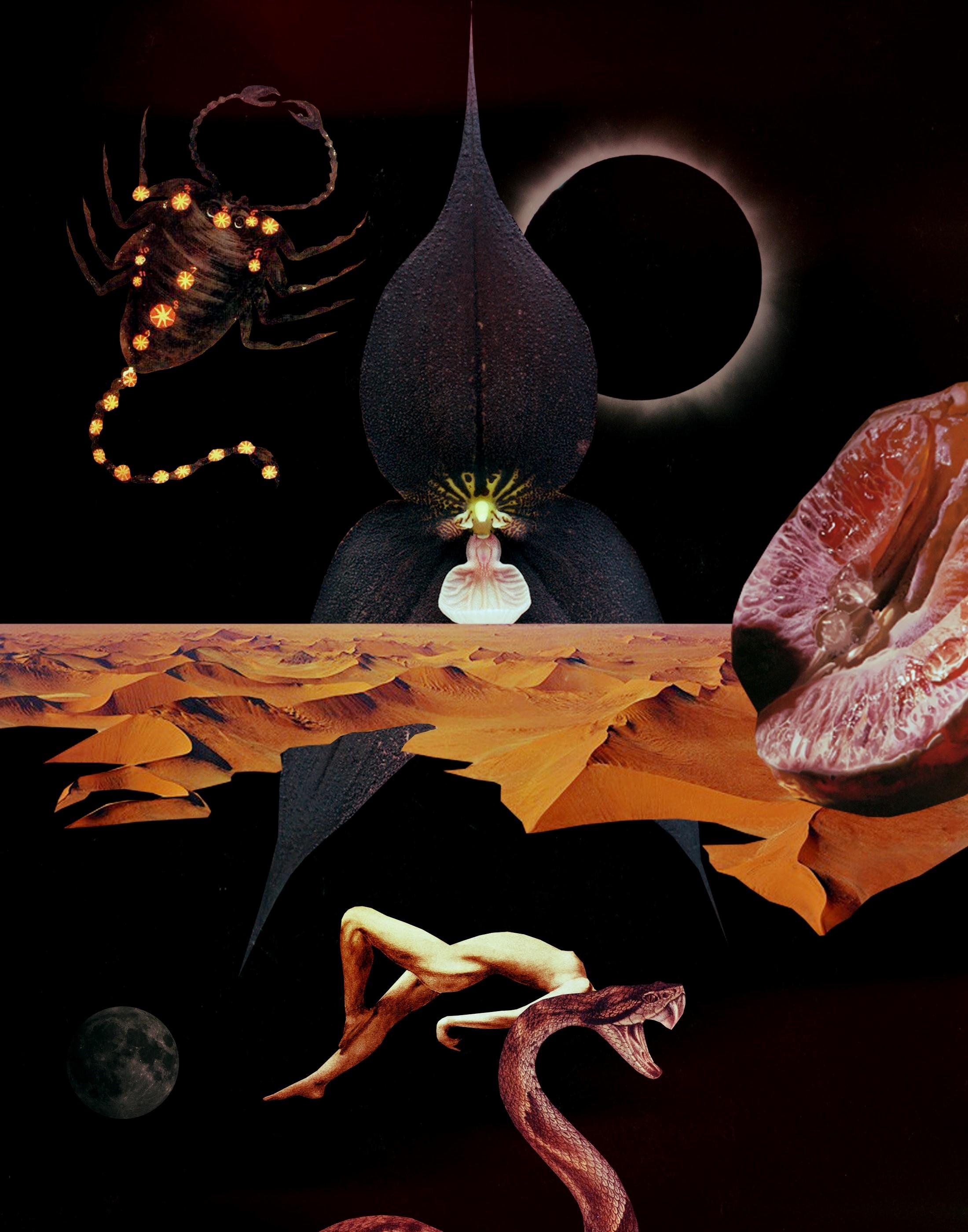 Artwork Devany Wolfe x Bri Luna