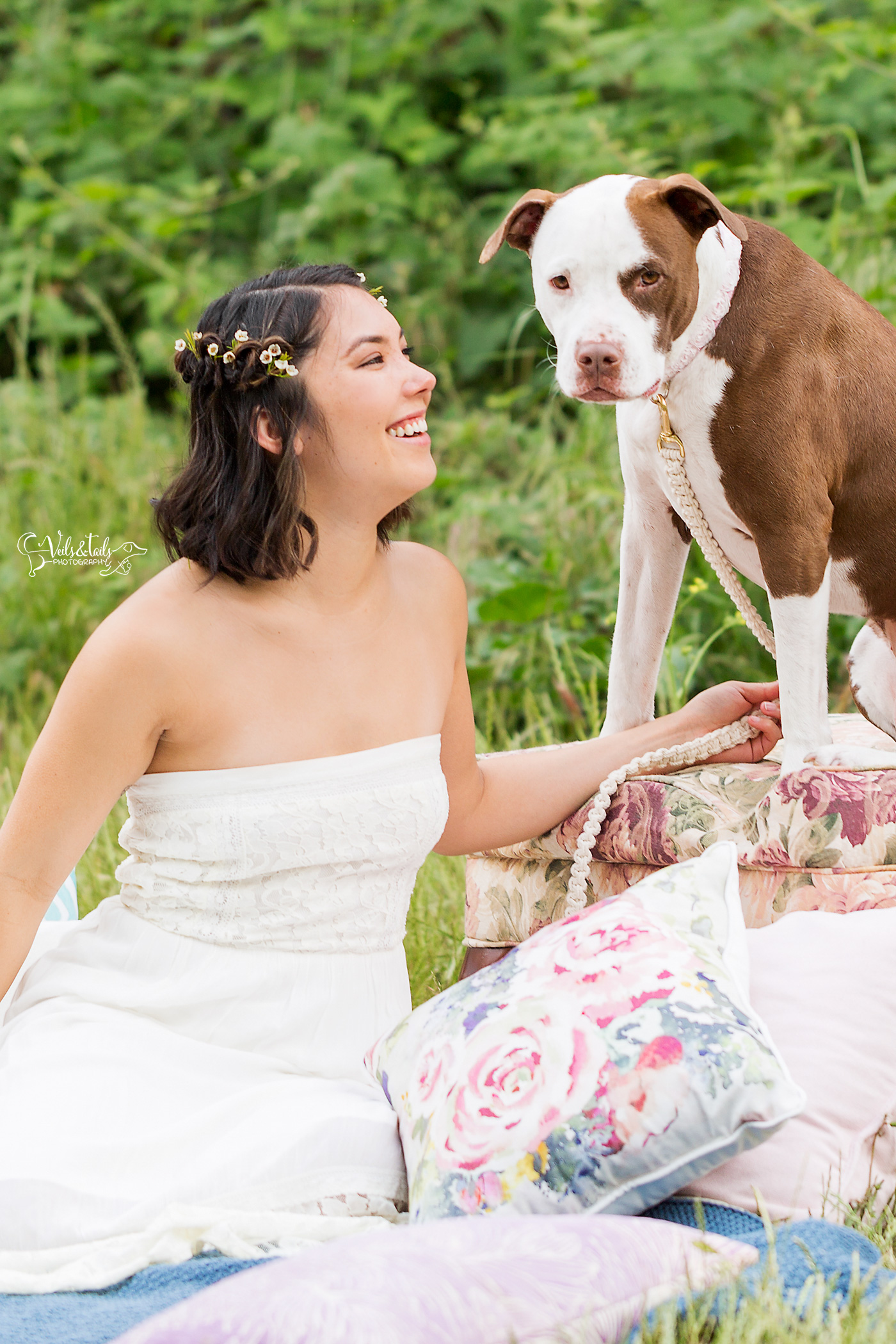 Santa Barbara dog photographer