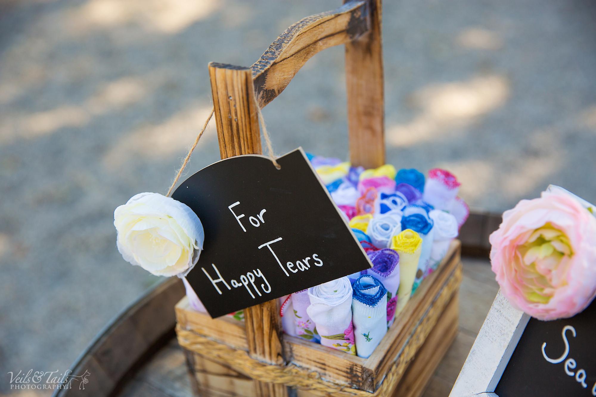wedding photographer santa barbara county