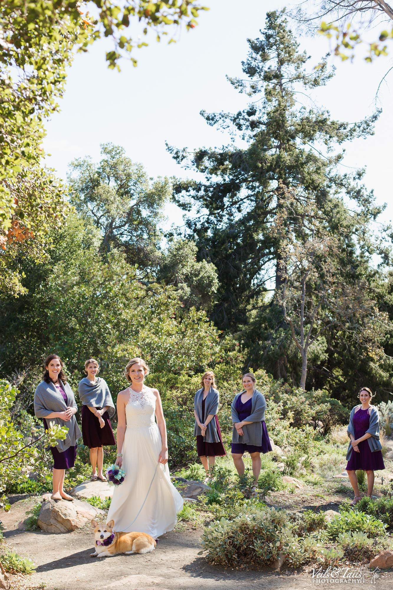 Santa Barbara Botanical Gardens Wedding