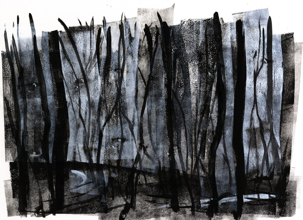 01 Burned Forest 2.jpg