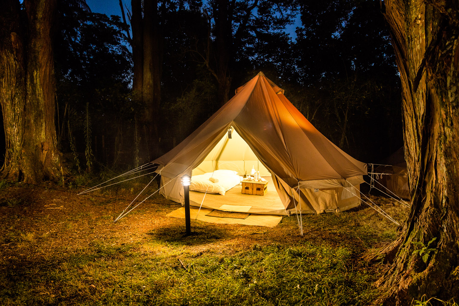 Glamping experience     scroll down