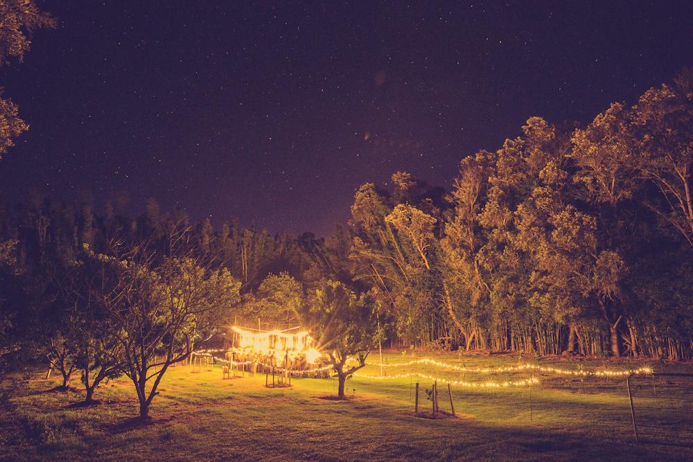 Wildernest Okiwi - Wedding Table Evening-People-9.jpg