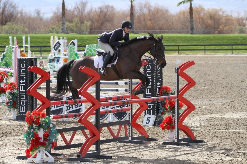 Kiva and I competing at Thermal in the 1.20m this year. Kiva was bred by my aunt and I've been fortunate to have her in training for two years. We've both come a long way and hopefully still have a long way to go!