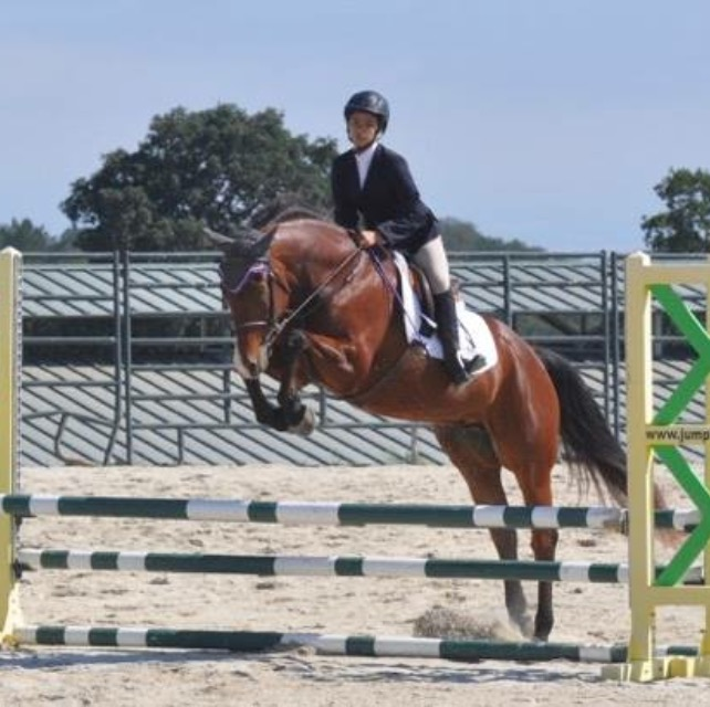Toffee and Amy in the .70m Jumpers. Photo by Maureen Dollente.