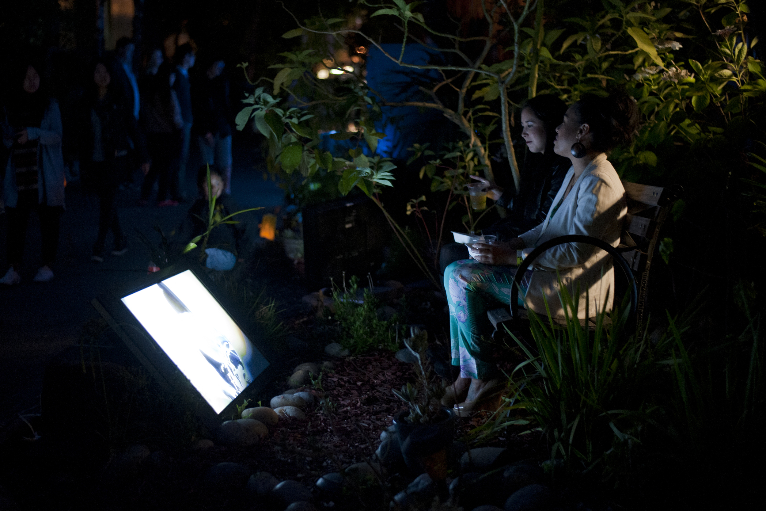 Night Light Multimedia Garden Party 2014_14591401420_o.jpg