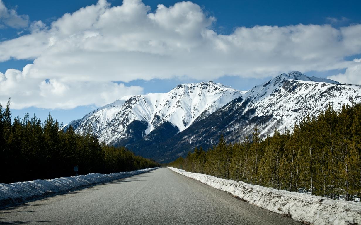 Alaskan Road Trip II