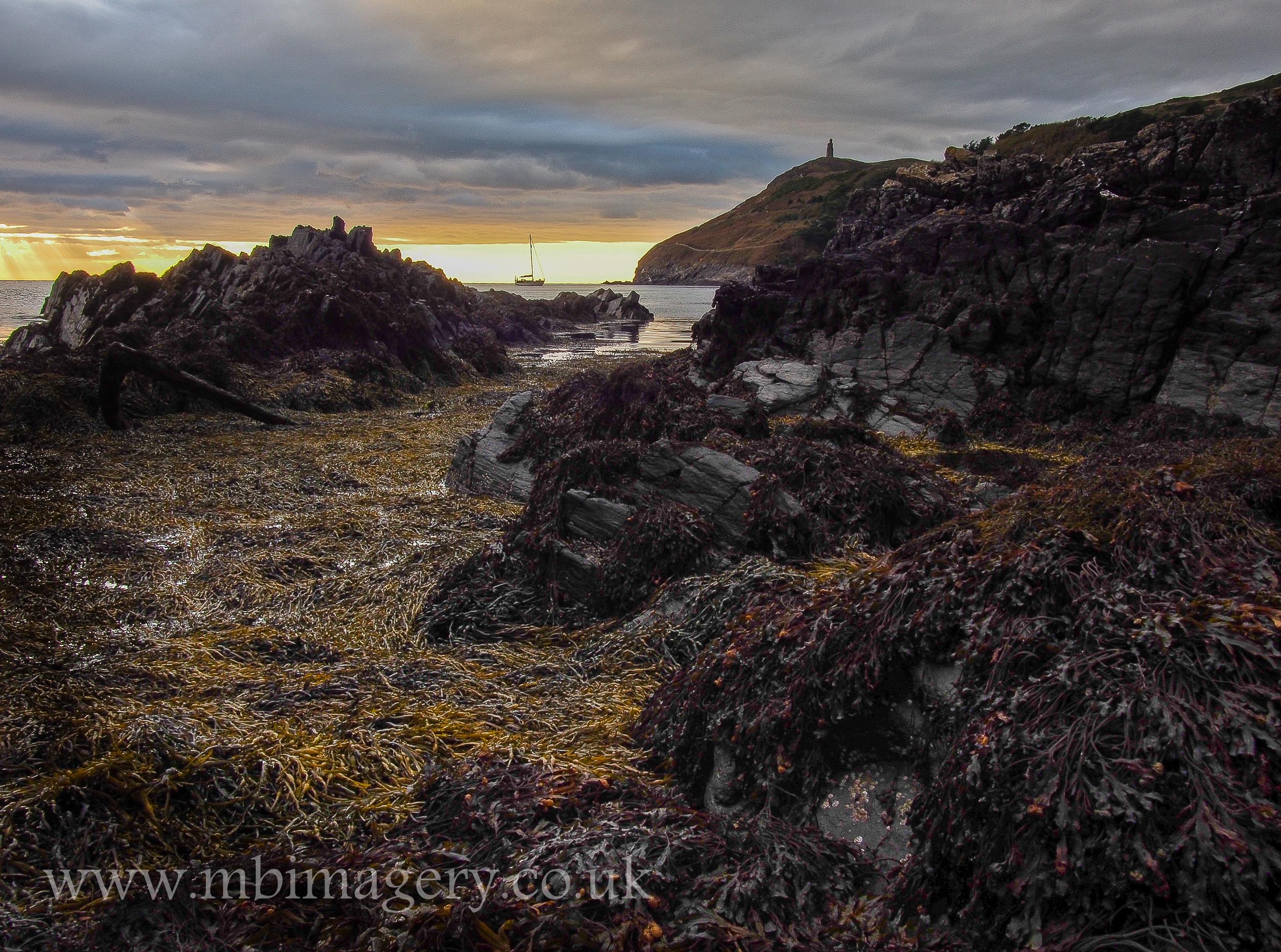 Seaweed Swathes to Bradda Head....