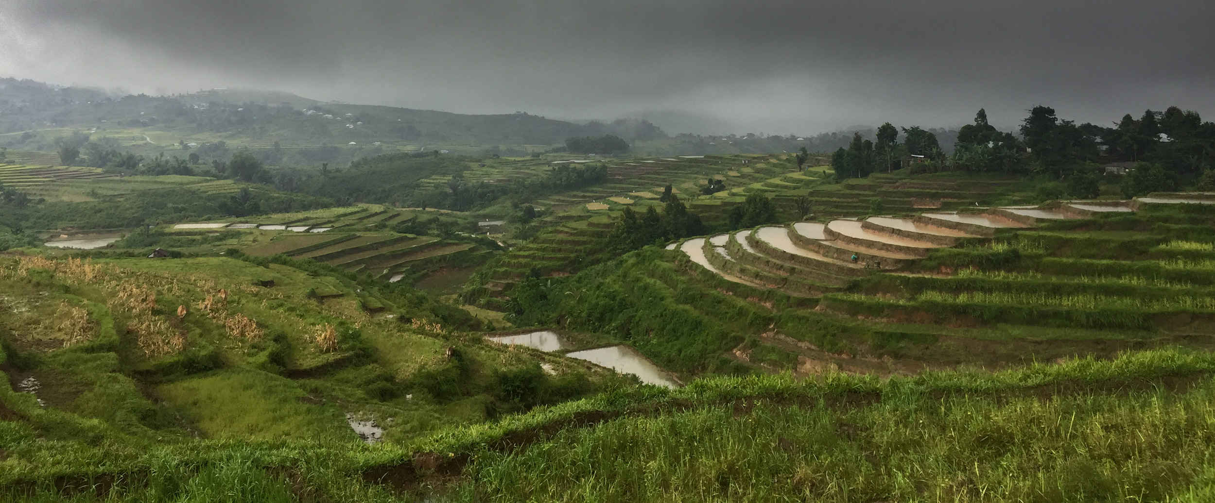 Terraced Paddy Fields.... Beautiful even in the horrific weather....