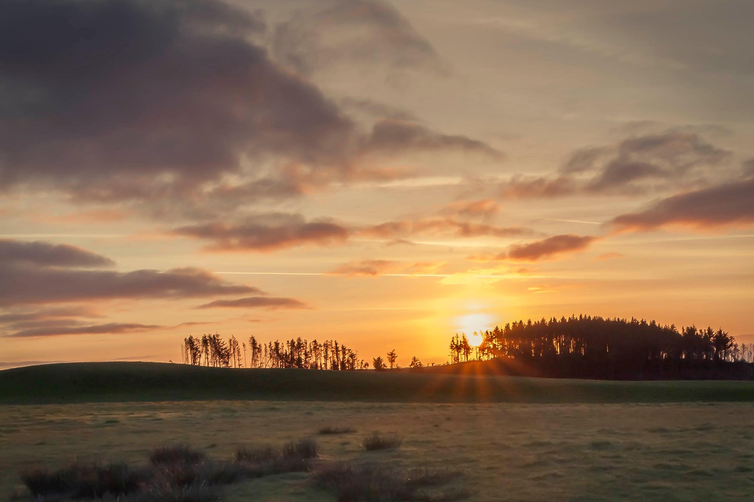 Conrhenny Dawn