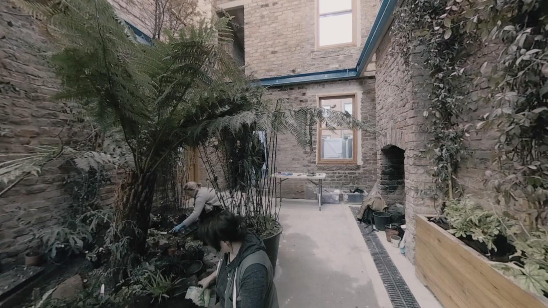 Inside winter garden 2.jpg