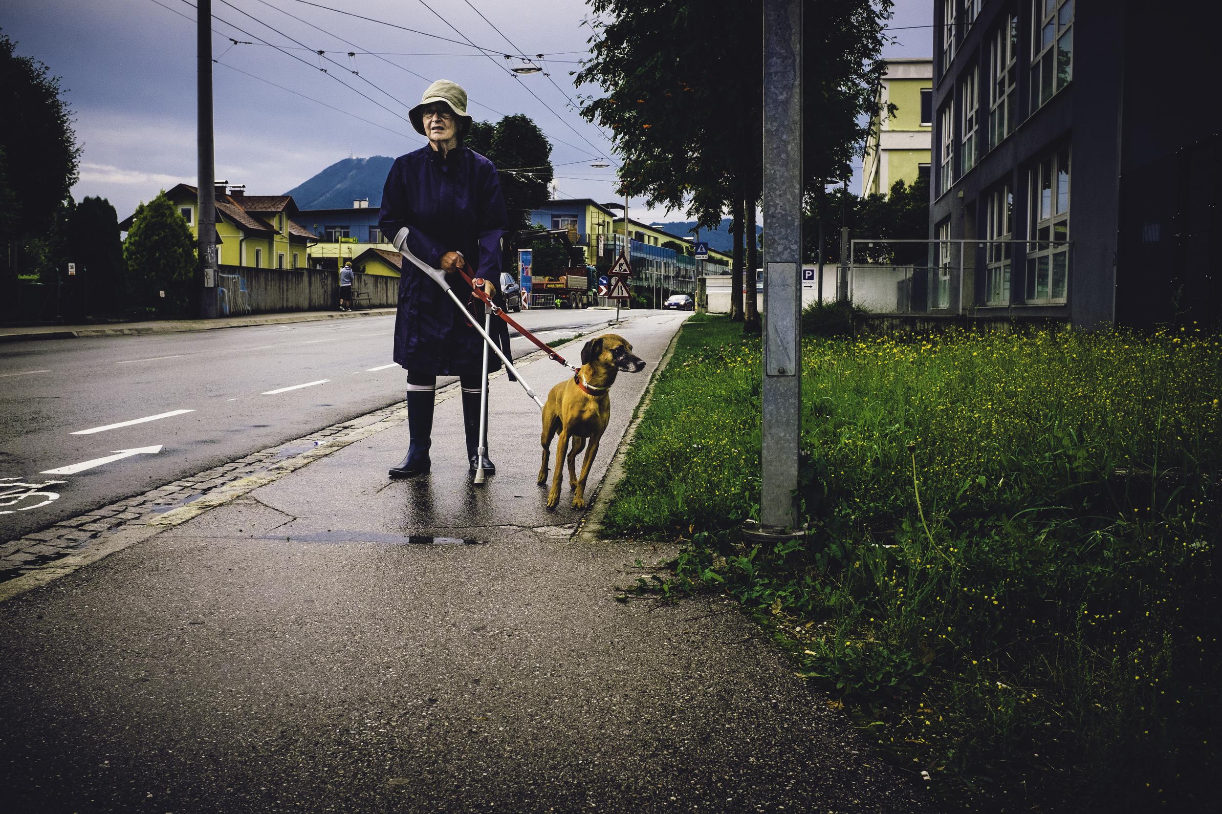 lady and her tramp str.jpg