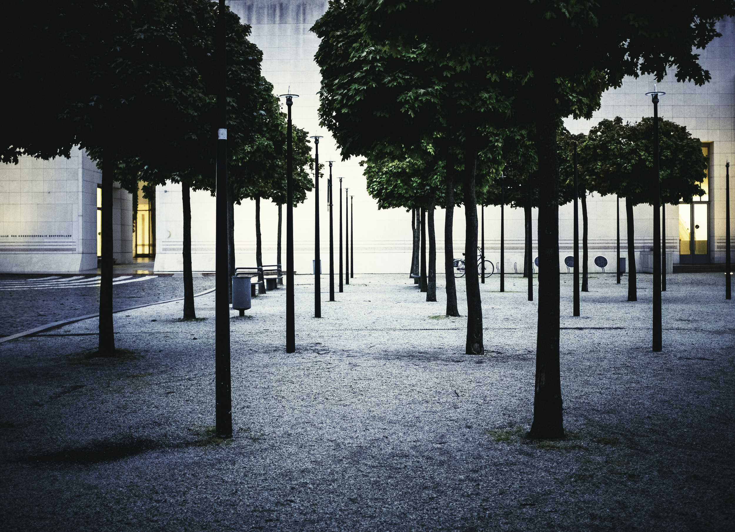 Trees and shadows at the Kunstmuseum in Bonn