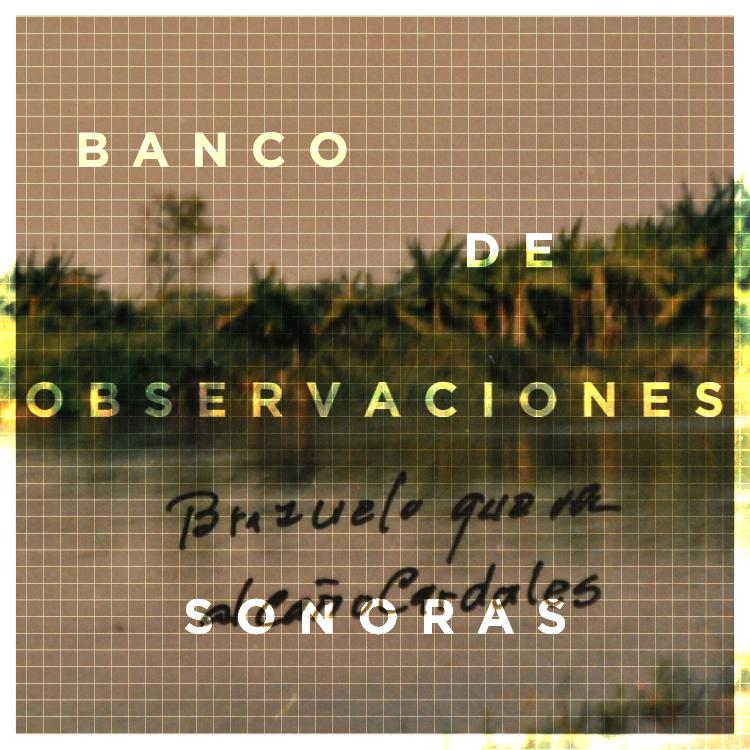 Banco de Observaciones Sonoras