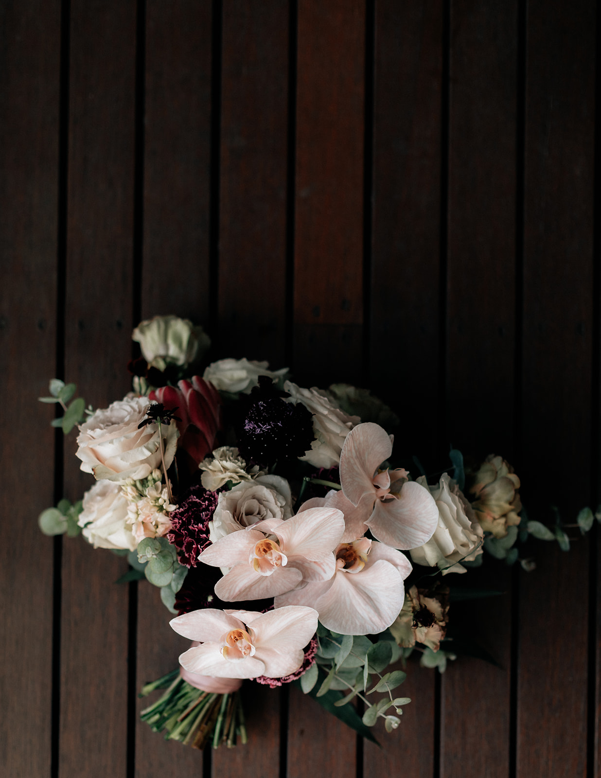 Karis and Oli_Sydney Wedding_Bradleys Head_Holly Medway Photography-24.jpg