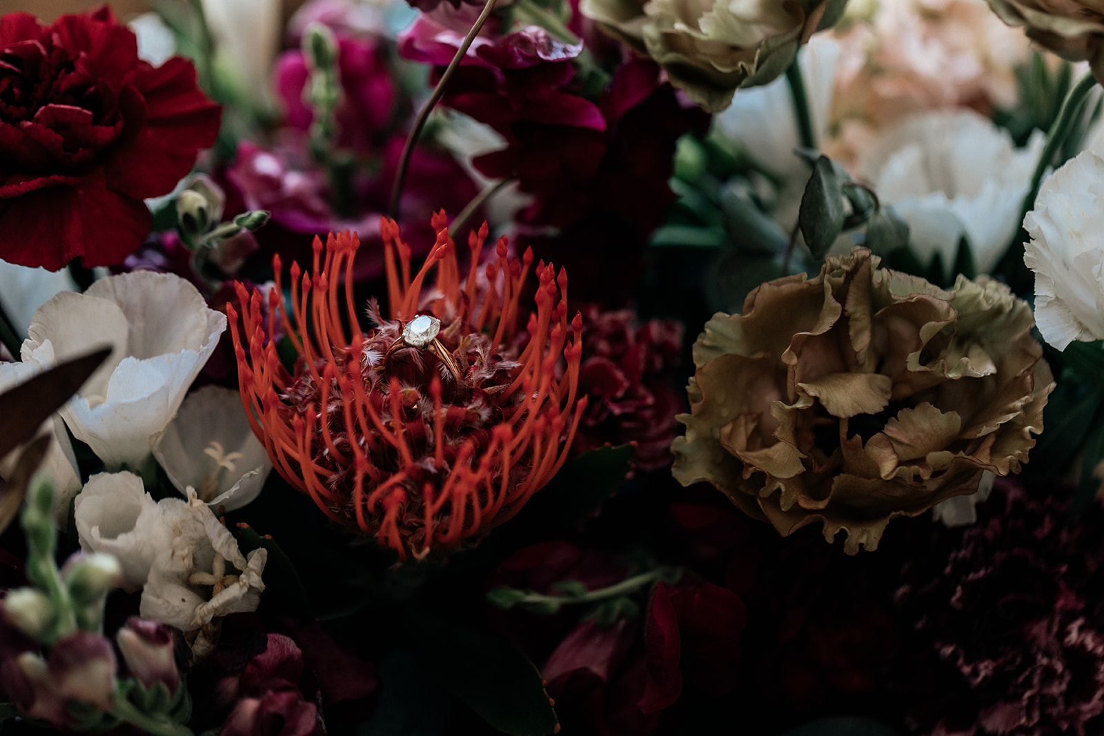 Karis and Oli_Sydney Wedding_Bradleys Head_Holly Medway Photography-45.jpg