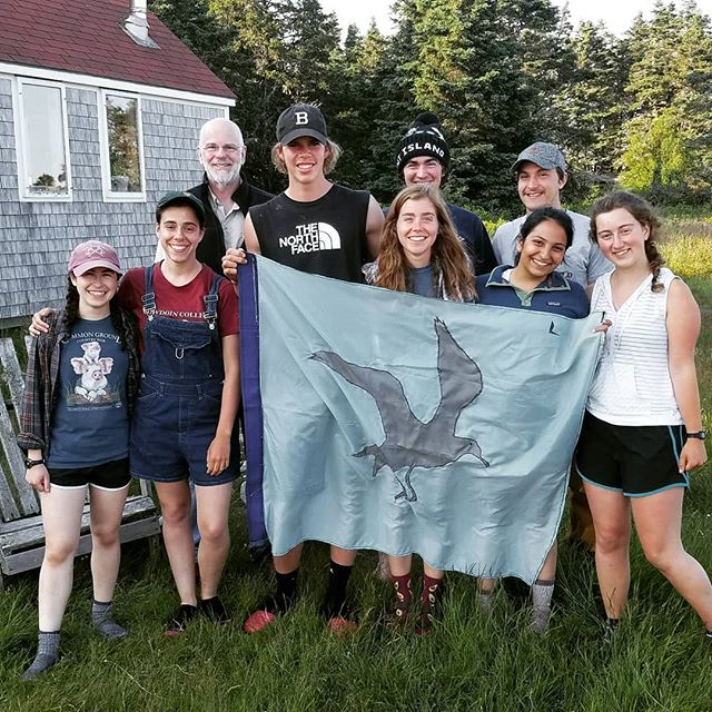 It's official the petrel flag is being flown, our first petrel chick has been found. Thanks to everyone who has helped grub this season including @crosebowdoin  #bsskentisland #bowdoin