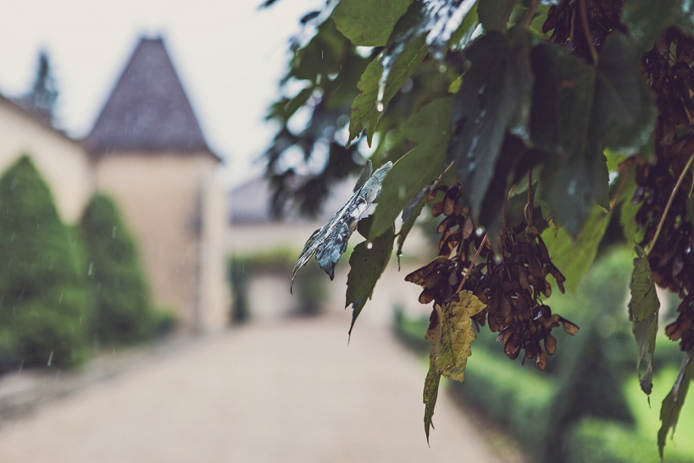 Vineyard chateau wedding Chateau Soulac Dordogne France_0013.jpg