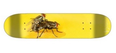 Fly+Love+Skateboard.jpeg