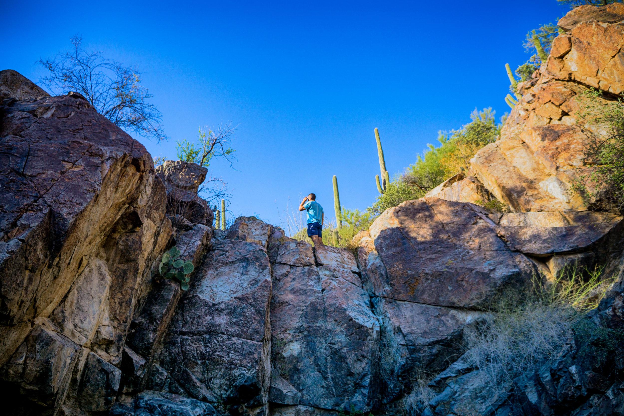 vickygood_photography_nature_saguaro-park6.jpg