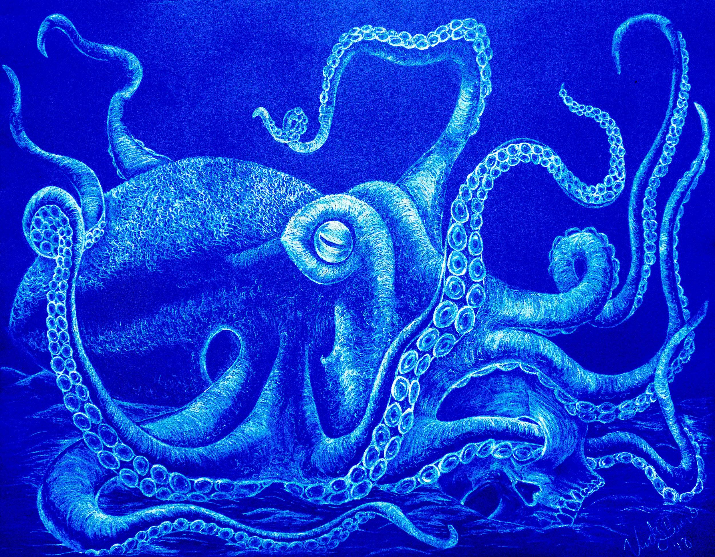 """Octopus and Skull"""