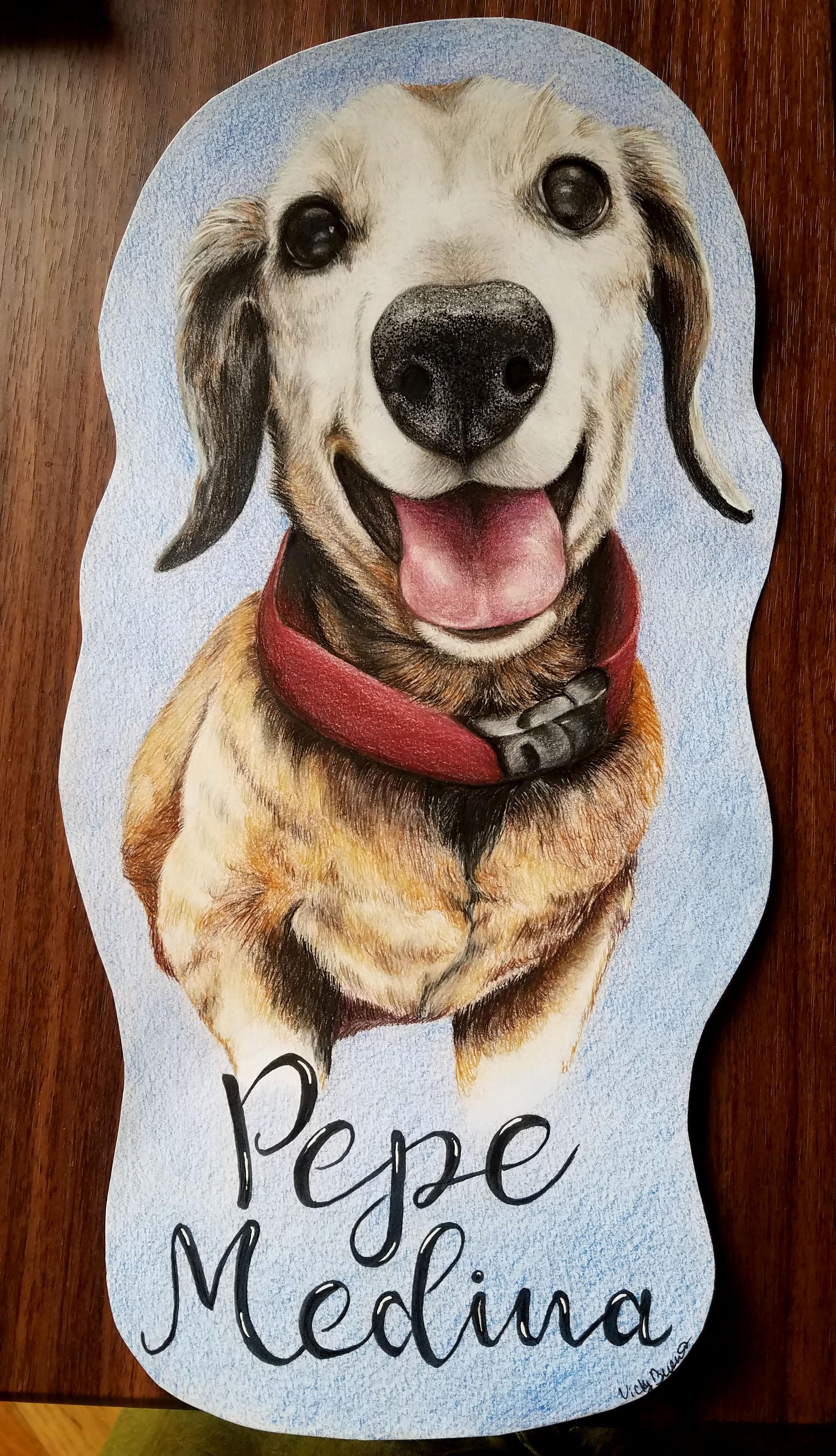 """Dog Portrait"""