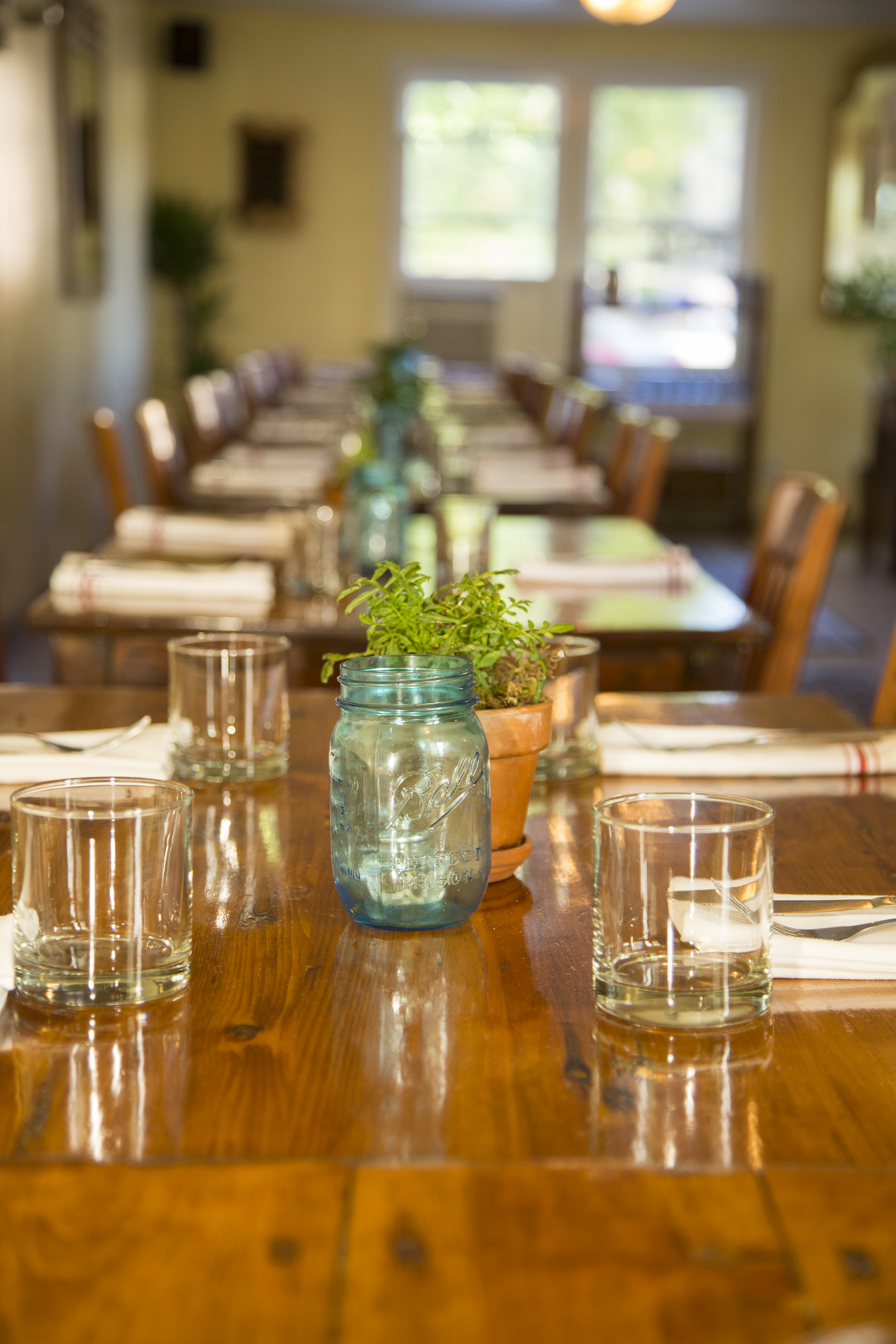 backyard_forestville_sonoma_county_restaurant_55_7962.png