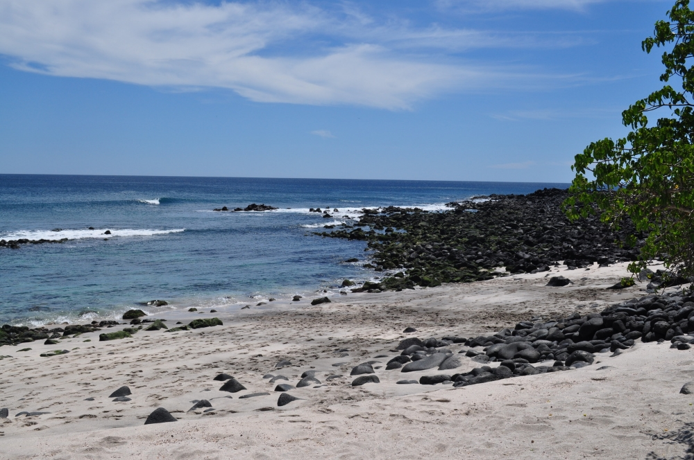 Dr. Walsh studies the ways in which erosion changes the shape of Galápagos beaches over time. He uses satellite images and field measurements to categorize beaches in terms of their environmental vulnerability. Photo credit Stephen Walsh.