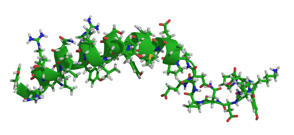 Neuropeptide Y is the opposite of Corticotropin releasing factor: it buffers against anxiety and depression and decreases the likelihood of binge-drinking behavior. It is presented here as a ribbon diagram overlaid upon a stick model.Photo by Ayacop, Wikimedia Commons