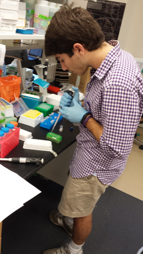 Daniel Zeitouni, cofounder of Purple Mission at UNC and undergraduate research member of the Der Lab. Photo credit: Kirsten Bryant.