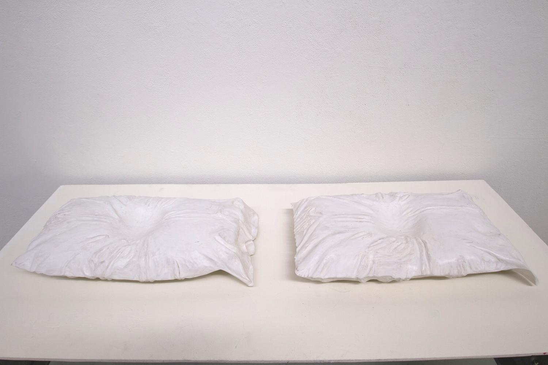 "Pillow Sighted 24 hrs, Pillow Blinded 38 hrs  Bass wood, each approx 24"" x 18"" x 6"", 2014"