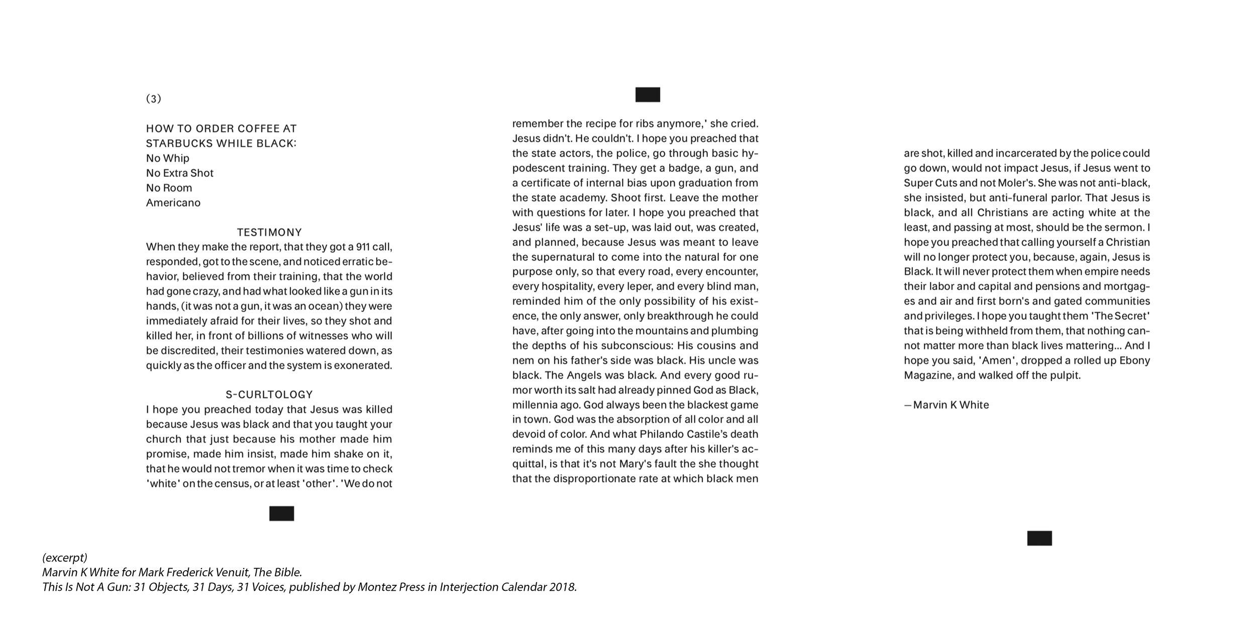 (09) Levine_Cara_This Is Not A Gun_ essays2.jpg