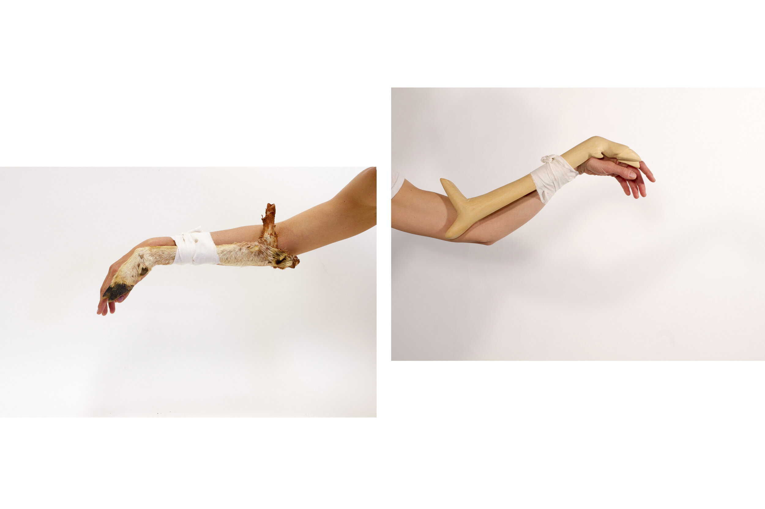 pair 1.jpg