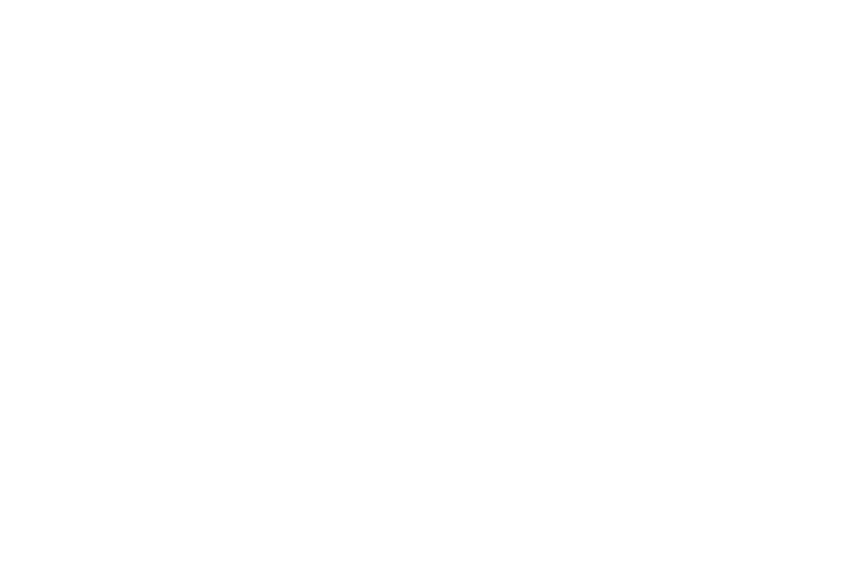 havenlogo.png