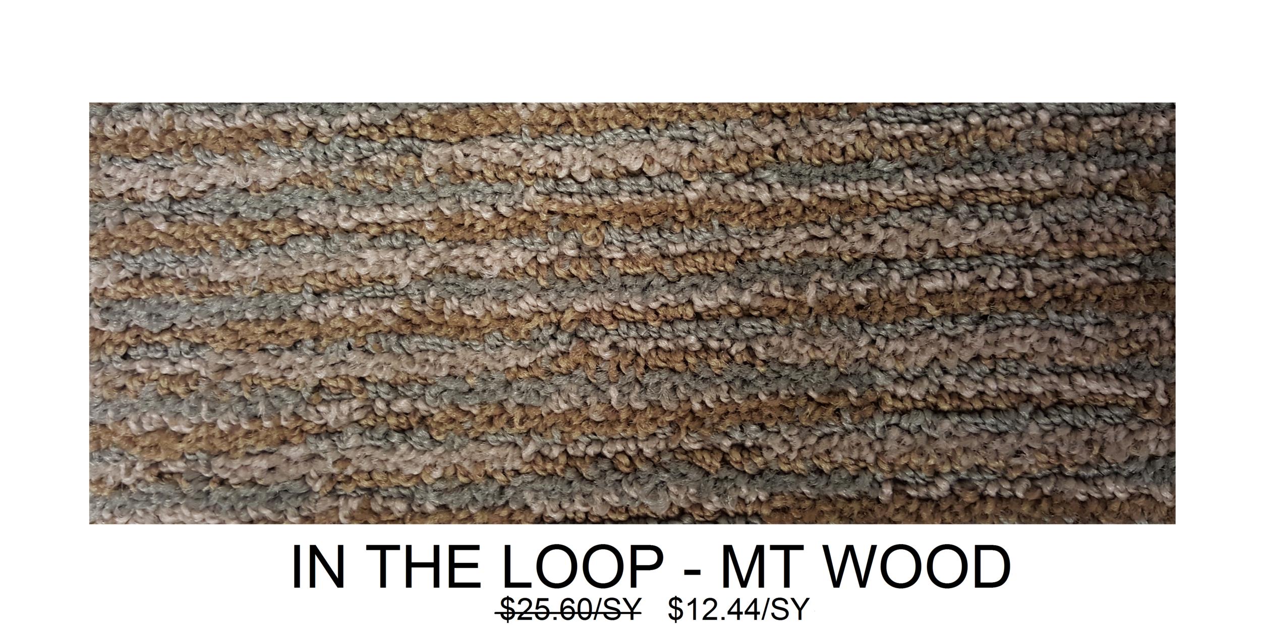 In the Loop - Mt Wood.png