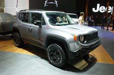 Jeep Hard Steel Renegade-20270.jpg