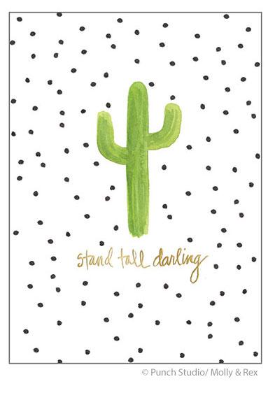Cactus_5x7Cards.jpg