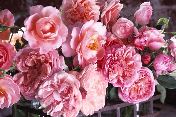 floraldesign.5.jpg