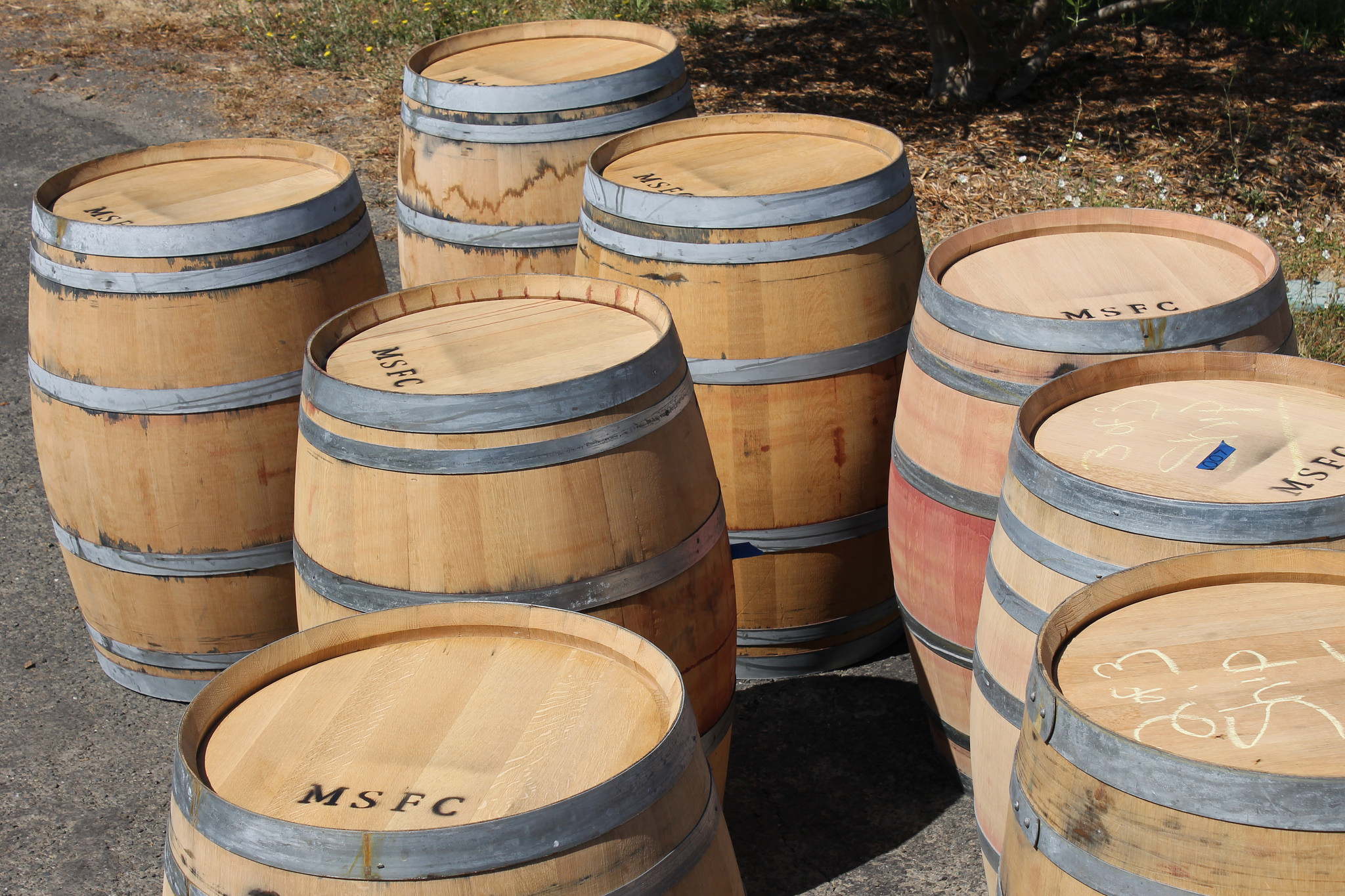 Scheidt_oak_barrels