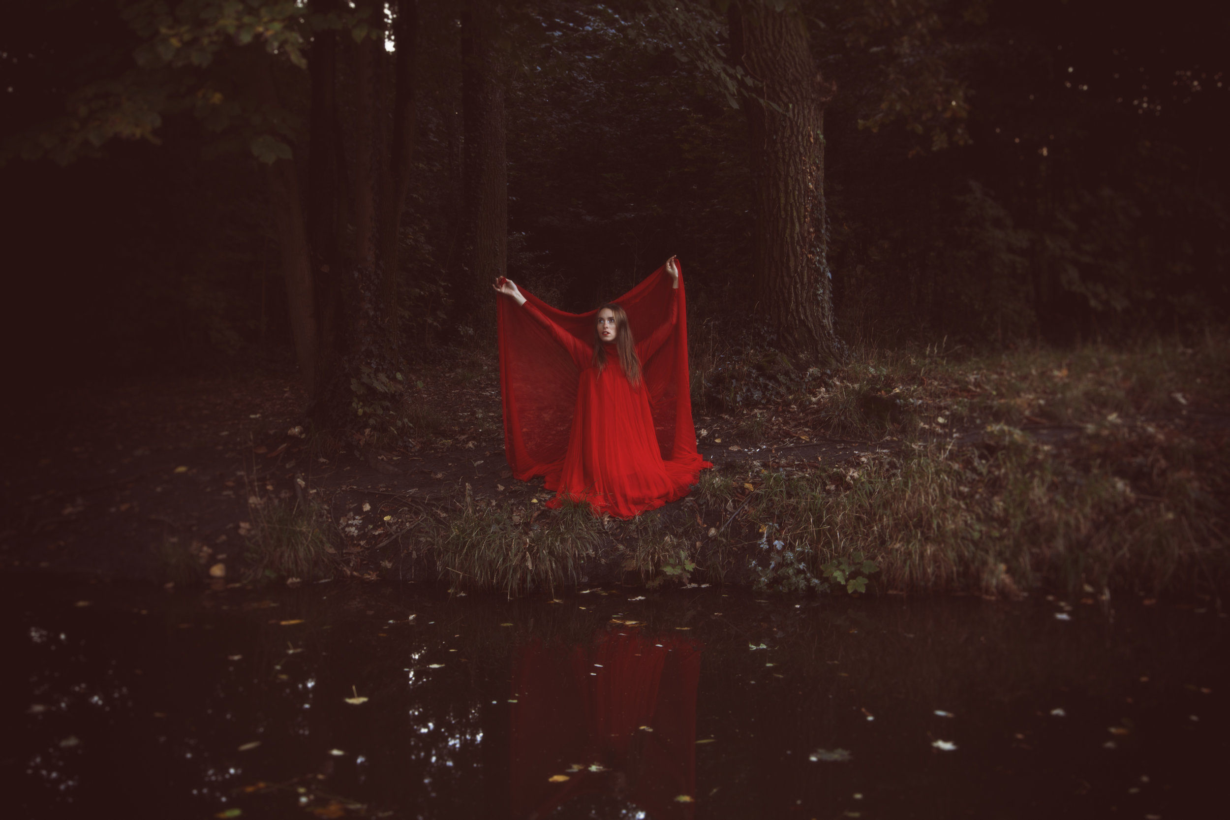 Mists Of Avalon, 2016 © Anouska Beckwith