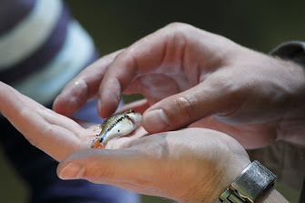 a small fish in a students hands