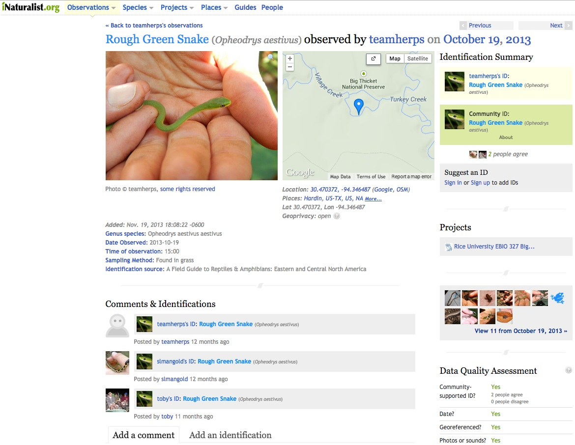Screenshot of the Naturalist.org website submission.