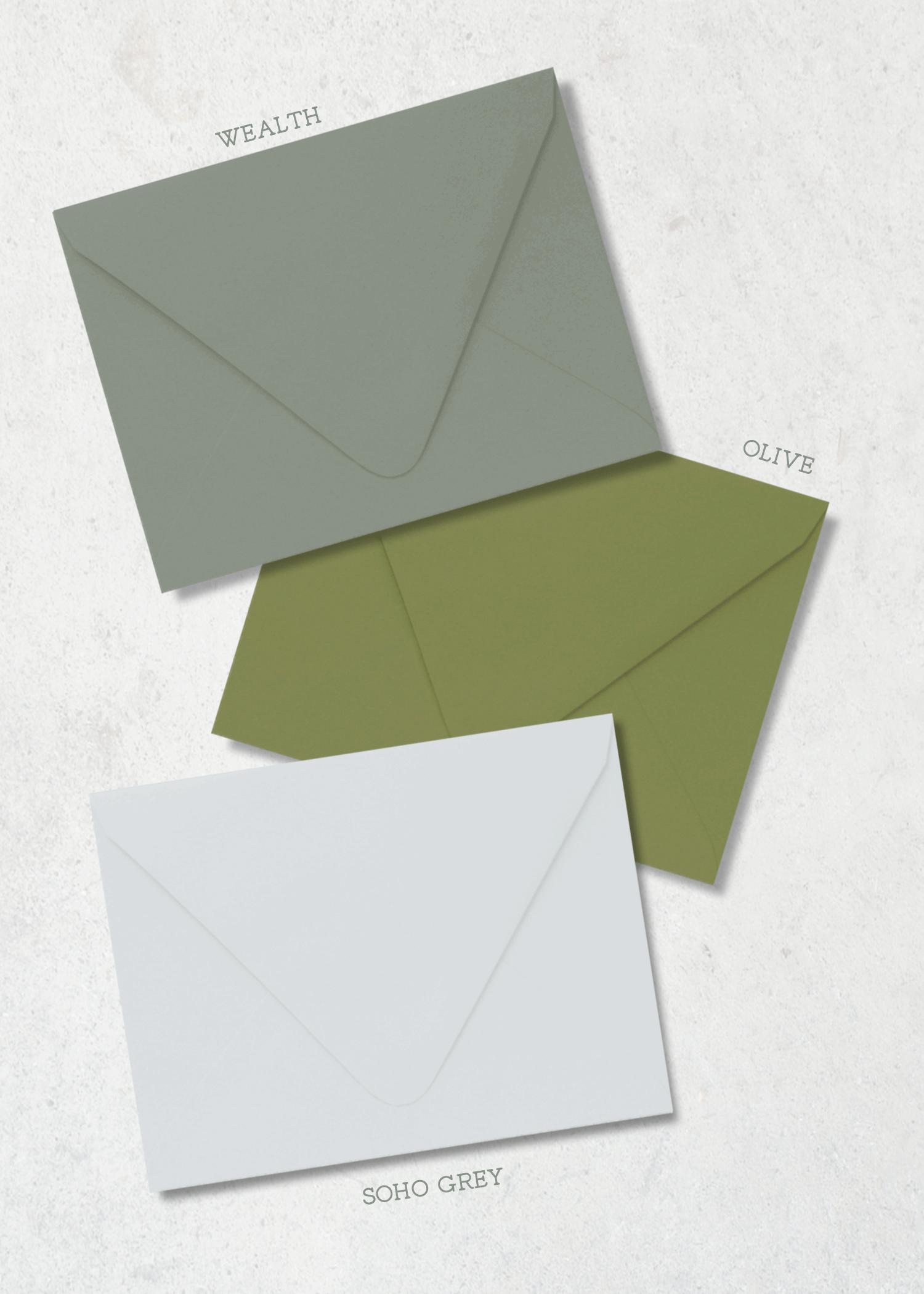 Color-Envelope-Leafy-Vine-PP.png
