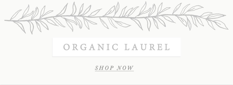 Organic laurel banner