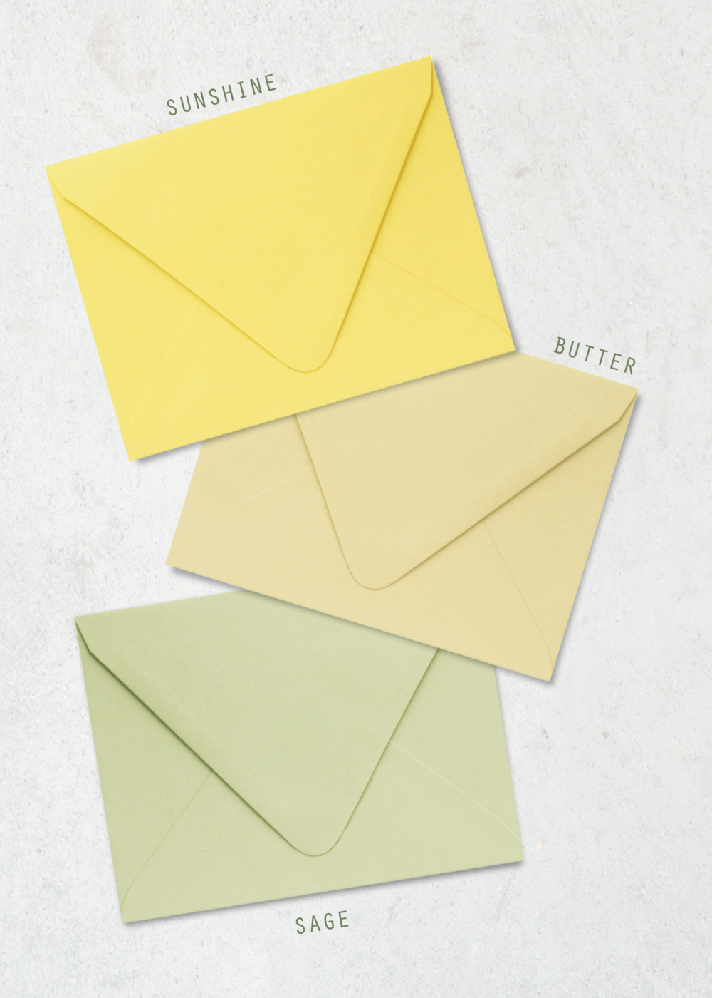 Color-Envelope-Yellow-Wildflower-PP.png